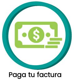 metodos_de_pago_2.png